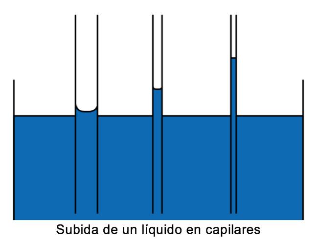 imagen-barreras-horizontales-Subida-de-un-liquido-en-capilares